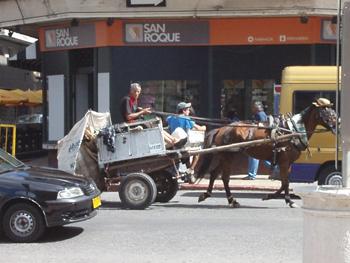 horsecarmontevideo